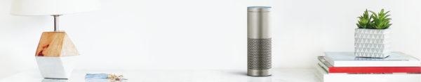 Amazon EchoのSkill
