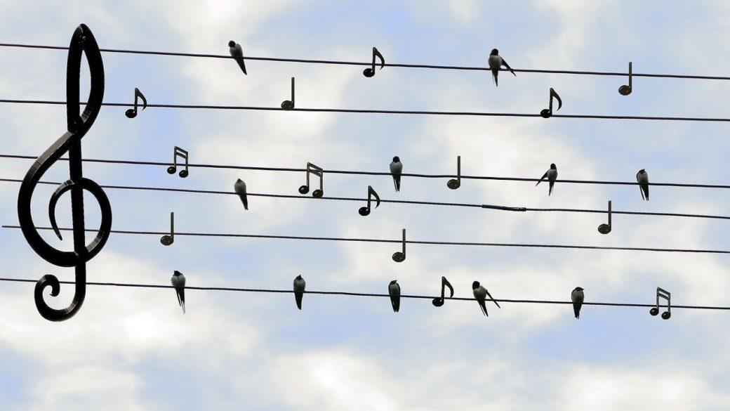 音楽再生にもおすすめ